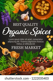 Organic spices, farm market store of seasonings. Vector lavender and ginger, garlic and poppy, basil and pepper mix, mint and cinnamon. Condiments and flavorings for cooking