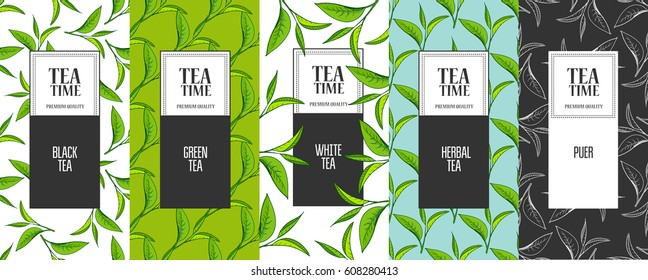 Organic tea frame labels with place for text. Leaves background. Design for tea packaging, natural cosmetics and health care products with place for text. Vector illustration.