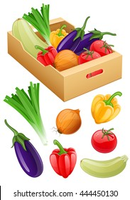 Organic vegan vegetables set of fresh agriculture harvest fruits in cardboard box onion eggplant tomato peppers vector illustration