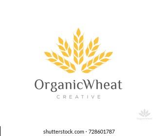 organic wheat logo icon vector