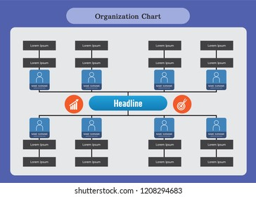 Organization Chart Infographics