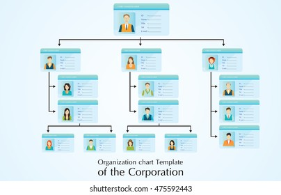 Organizational chart template of the corporation business hierarchy ,people structure, character cartoon business  conceptual vector illustration.