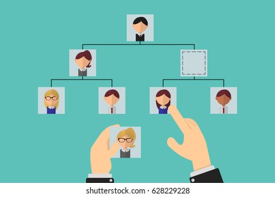 Organizational tree, election of staff to fill vacancies