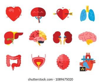 Organs Icon Set. Heart Brain Kidneys Liver Lungs Heart With Love Arrow Spleen Cerebrum Stomach Intestine Alzheimer Bladder Human Heart