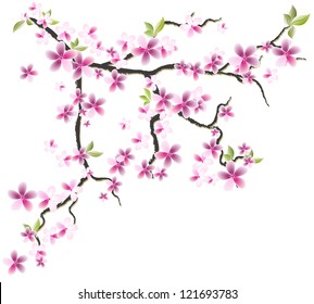 Oriental cherry branch with flowers and leaves. Element for design. Vector. eps 8