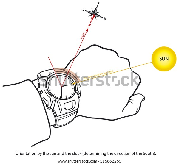 orientation using clock, and sun  determining the south