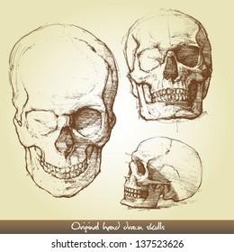 Original hand drawn skulls