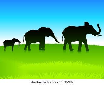 Original Vector Illustration: elephants in the wild AI8 compatible