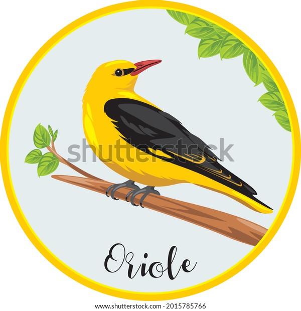 oriole-sits-on-branch-sticker-600w-20157