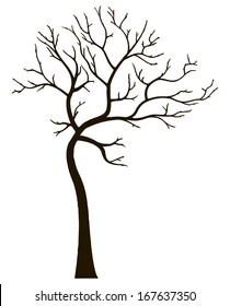 Ornamental deciduous tree without leaves. Vector illustration.