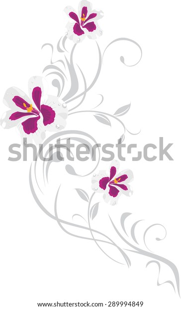 ornamental-element-pelargonium-flowers-v