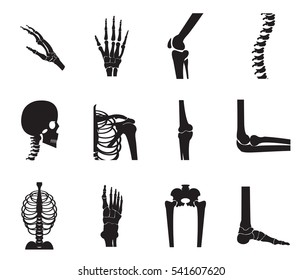 Orthopedic and spine icon set on white background, bone x-ray image of human joints, anatomy skeleton flat design vector illustration.