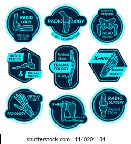 Orthopedics and traumatology icons of X-ray bones and joins for health center or radiology orthopedic clinic. Vector symbols of body joints and spine bones for corrective therapy and diagnostics