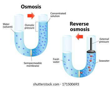Osmosis diffusion of fluid through a semipermeable membrane from a solution with a low solute concentration to solution with a higher concentration. Reverse osmosis is a water purification technology