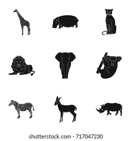 Ostrich emu, crocodile, giraffe, tiger, penguin and other wild animals. Artiodactyla, mammalian predators and animals set collection icons in black style vector symbol stock illustration web.