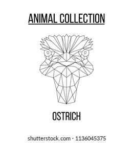 Ostrich head geometric lines silhouette isolated on white background vintage vector design element illustration