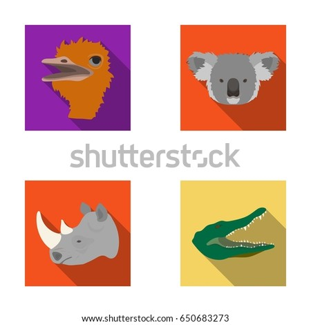 Ostrich Koala Rhinoceros Crocodile Realistic Animals Set Collection Icons In Flat Style