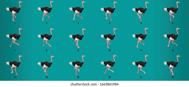 Ostrich Run cycle  animation sequence, loop animation sprite sheet