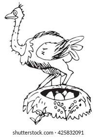 Ostrich vector drawn