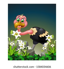 Ostrich With White Tropical Ivy Flower And Rocks Cartoon for your design