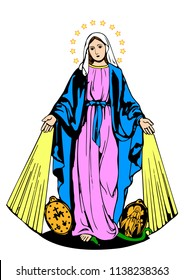 Our lady of Miraculous Medal Virgin Mary vector
