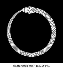 Ouroboros icon, detailed symbol of snake eating its own tail. White vector illustration EPS 10