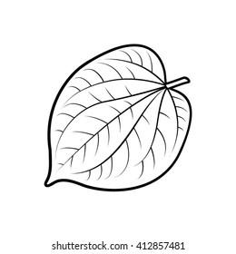 outline betel leaf vector illustration