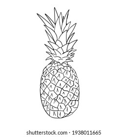 Outline black and white image of a pineapple.