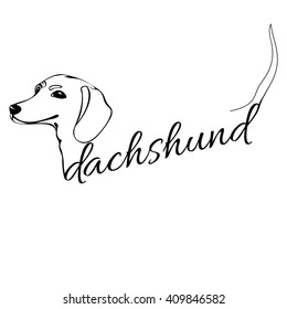 outline drawing of the dog's head and the words dachshund