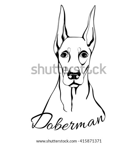 Outline Drawing Dogs Head Words Doberman Stock Vector Royalty Free