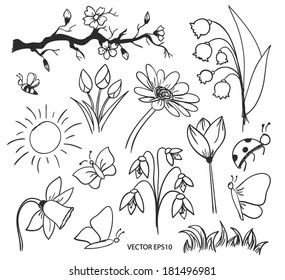 Outline flowers vector drawing