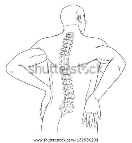 Outline Human Back Spine Stock Vector Royalty Free 131936201