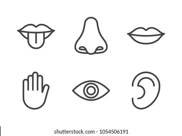 Outline icon set of five human senses: vision (eye), smell (nose), hearing (ear), touch (hand), taste (mouth with tongue). Simple line icons. Editable stroke. Vector illustration, eps10.