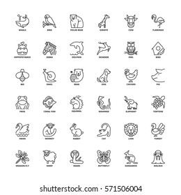 Outline icons set. Flat symbols about animals