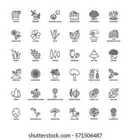 Outline icons set. Flat symbols about flowers, plants and trees.