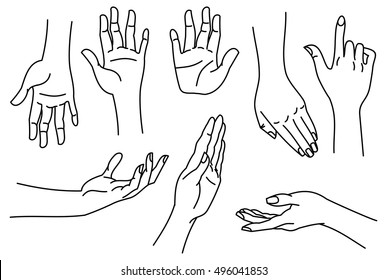 Outline images of hands. Contour human palms, wrists, gestures on a white background. Vector clip art.