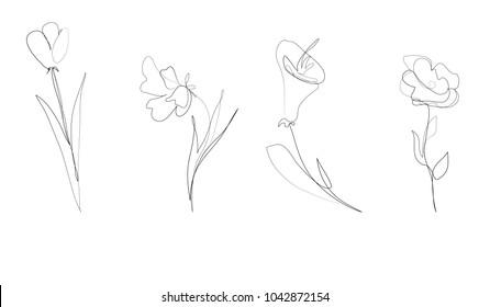outline vector set of different flowers. single line art