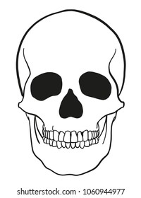 outline vector skull in black