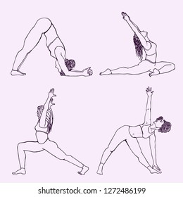 dolphin pose images stock photos  vectors  shutterstock