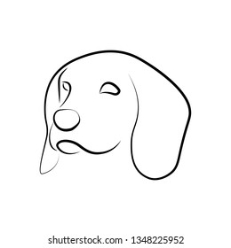 Outlined Beagle dog head. Vector illustration