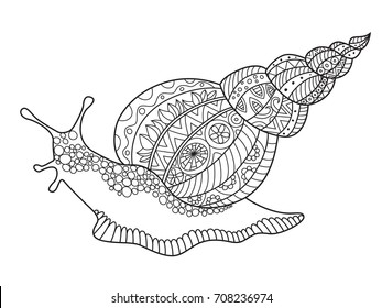 Outlined doodle anti-stress coloring giant snail ahatina. Coloring book page for adults and children