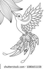 Outlined doodle anti-stress coloring humming bird and flower. Coloring book page for adults and children