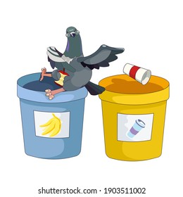 Outlined Feral Pigeon separating and throwing garbage on white isolated background, vector Rock Dove with color rubbish containers for prints, elements of decor, and icons for social networks or apps.