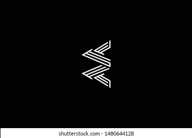 Outstanding professional elegant trendy awesome artistic black and white color E EE EE initial based Alphabet icon logo.