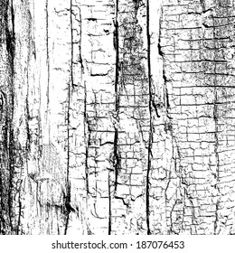 Overlay Texture - Dry Wood, for your design. EPS10 vector.