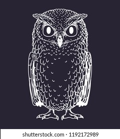 Owl bird hand drawn doodle sketch isolated on dark background. Vector illustration.