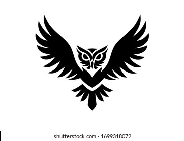 owl bird logo graphic design, wisdom symbol