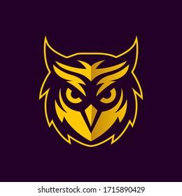 Owl bird mascot design - Owl vector design