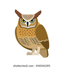Owl is a bird of prey, mainly nocturnal birds. Eagle horned owl Cartoon flat style beautiful character of ornithology, vector illustration isolated on white background.
