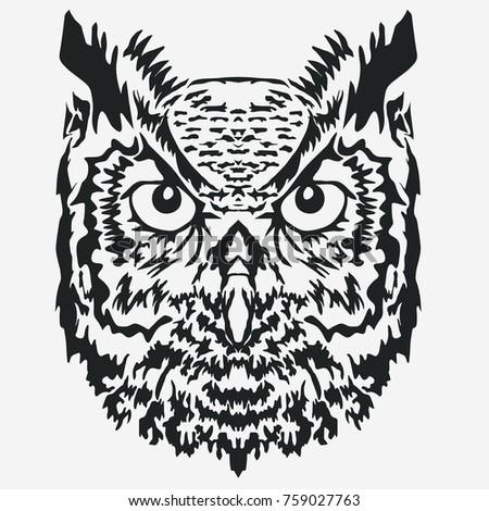 Owl Ta